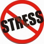 stress-fitness
