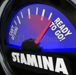 stamina2
