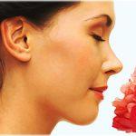 smell, odor, aroma, scent